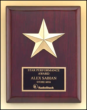 Star  Casting Plaque P3992